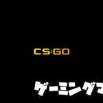 【CSGO】おすすめのゲーミングマウス