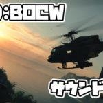 【CoDBOCW】サウンドカード