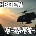 【CoDBOCW】ゲーミングキーボード